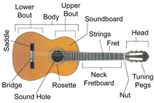 Classical Guitar Part Names